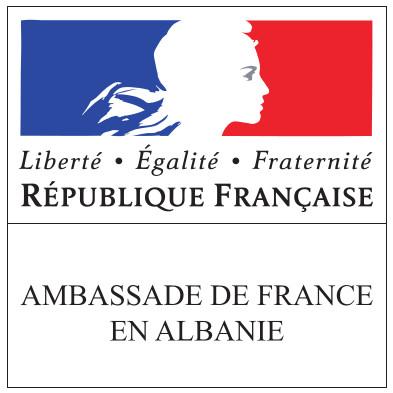 logo ambasada franceze vektorial